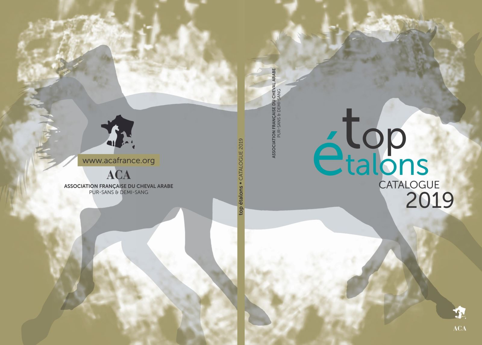 Catalogue top �talons